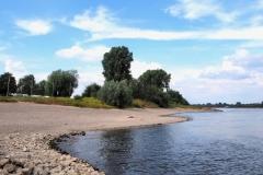 Am Rhein bei Meerbusch II