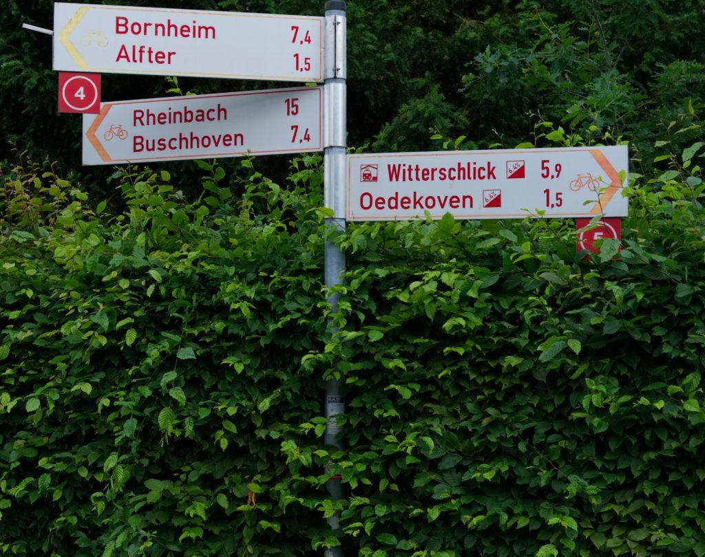 Rheinische Apfelroute mit Steigung