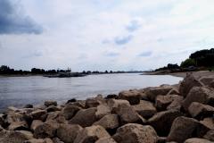 Am Rhein bei Meerbusch